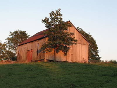 Photograph - Tobacco Barn II In Color by JD Grimes