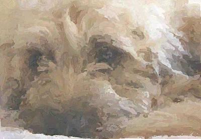 Keith Richards - Tobi by Amber Stubbs