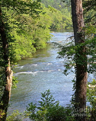 Photograph - Toccoa River by Carol  Bradley