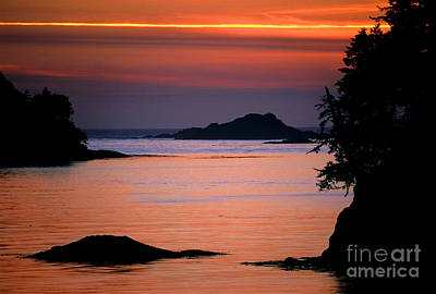 Photograph - Tofino - Sunset by Terry Elniski