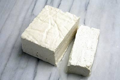 Tofu Photograph - Tofu by Victor De Schwanberg