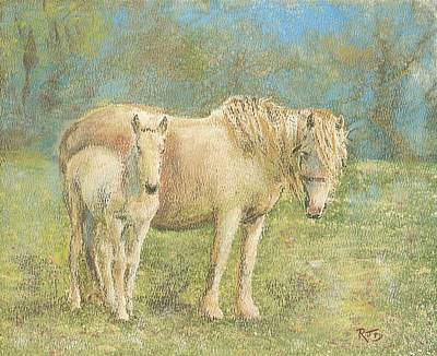 Together New Forest Pony And Foal Art Print by Richard James Digance