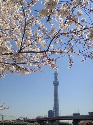 Built Structure Photograph - Tokyo Sky Tree by Hisako Hatakeyama