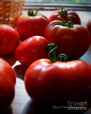 Tomato Love Art Print by Susan Fisher