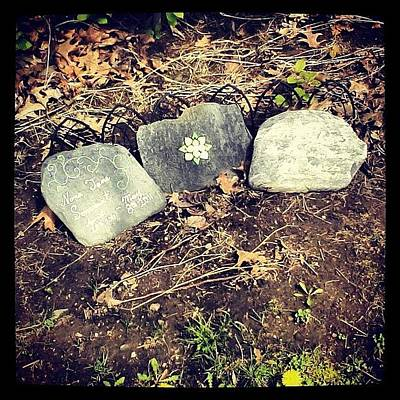 Decorative Photograph - #tombstone #pretty #decorative by Kayla St Pierre