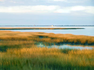 Impressionistic Digital Painting - Tom's Cove Marsh At Assateague National Park Maryland by Elaine Plesser