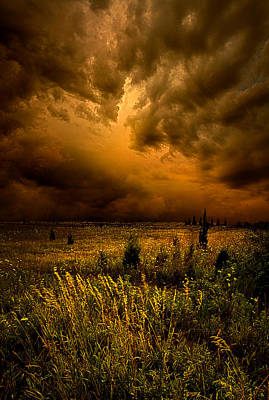 Too Little Too Late Art Print by Phil Koch