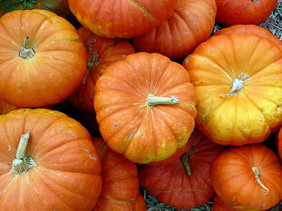 Photograph - Top Grouping Of Pumpkins  by Jeff Lowe