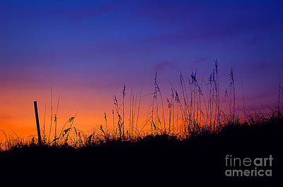 Photograph - Topsail Sunset by Jane Brack