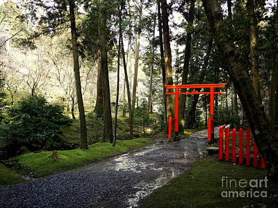 Torii Photograph - Torii In The Trees by Cathleen Cawood