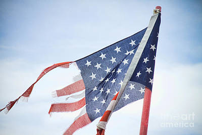 Torn American Flag Art Print by James BO  Insogna