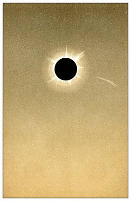 Solar Prominence Photograph - Total Solar Eclipse Of 1882 And Comet by Detlev Van Ravenswaay