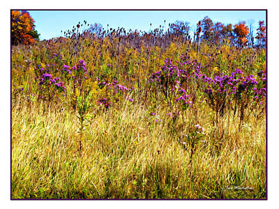 Photograph - Touch Of Purple In October by Joan  Minchak