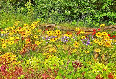 Split Rail Fence Photograph - Touche' Fencing With Flowers by Randy Rosenberger