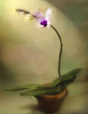 Toward The Light Art Print by Jill Balsam
