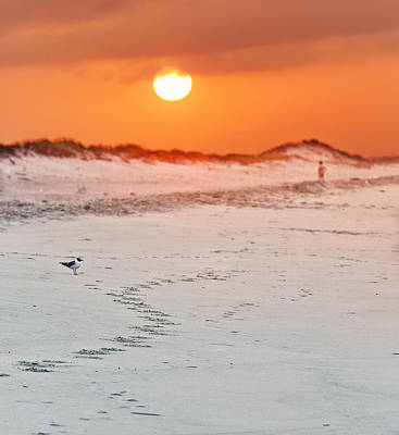 Toward The Sunrise Art Print by Vicki Jauron