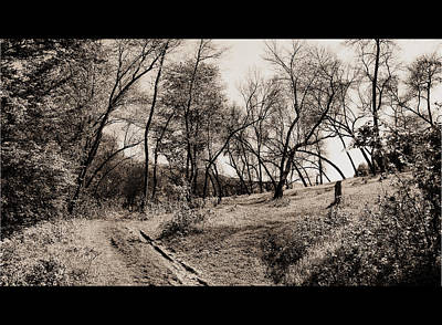 Photograph - Towards Meadow by Bogdan M Nicolae