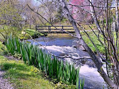 Photograph - Town Brook In Spring by Janice Drew