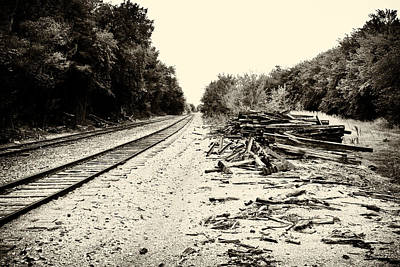 Photograph - Tracks And Timber by Tony Grider