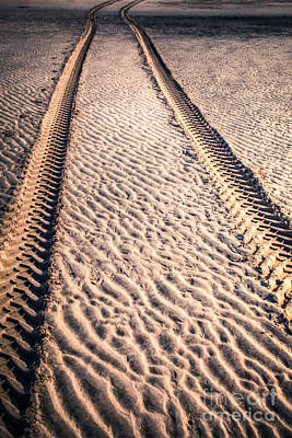 Tracks In The Sand Print by Adrian Evans