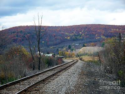 Photograph - Tracks In The Valley by Christian Mattison