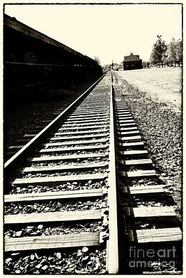 Photograph - Tracks Of Our Ancestors by Leslie Leda