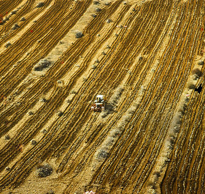 Tractor Cultivating Field Art Print by Daniel Blatt