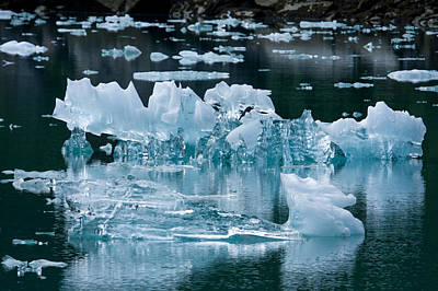 Up201209 Photograph - Tracy Arm Fjord Ice One by Josh Whalen