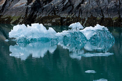 Up201209 Photograph - Tracy Arm Fjord Ice Two by Josh Whalen