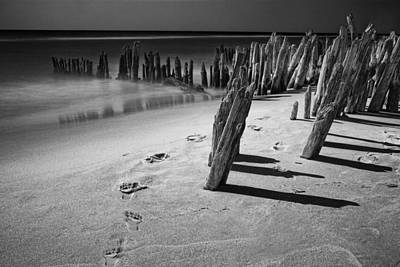 Photograph - Trail Of Footprints On The Beach At Kirk Park by Randall Nyhof