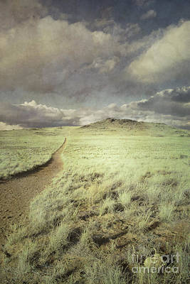 Sandia Mountains Photograph - Trail Of Whimsy by Andrea Hazel Ihlefeld