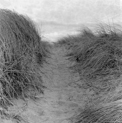 Maine Roads Photograph - Trail Through The Sand Dunes by Daniel J. Grenier