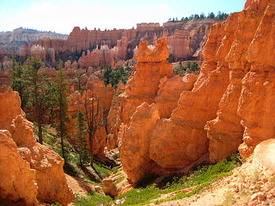 Trail View Bryce Canyon Art Print