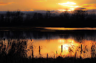 Photograph - Tranquility At Ridgefield Wildlife Refuge by Athena Mckinzie