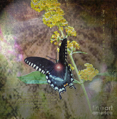 Transformation Art Print by Patricia Griffin Brett
