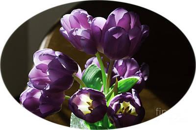 Photograph - Translucent Purple Petals by Donna L Munro