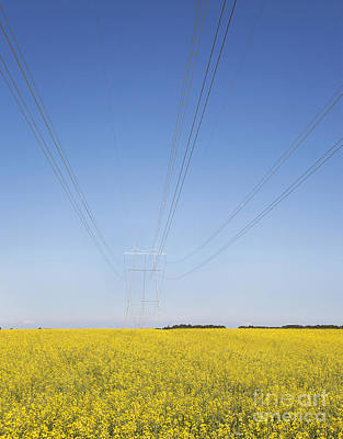 Transmission Towers And Power Lines Art Print by Jaak Nilson