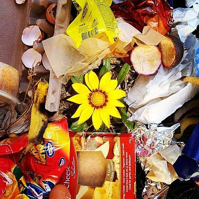 Gmy Photograph - Trash by Cameron Bentley