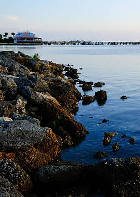 Photograph - Treasure Coast - Cropped Version by Laura DAddona
