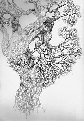 Digital Art - Tree 21 by Brian Kirchner