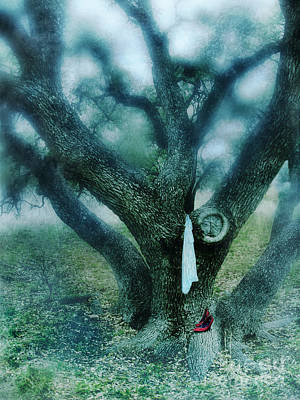 Photograph - Tree And Red Shoes by Jill Battaglia