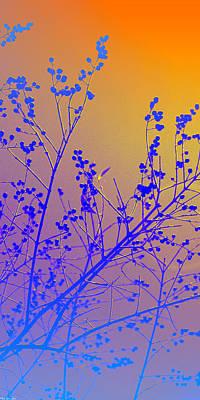 Photograph - Tree Art by Gray  Artus