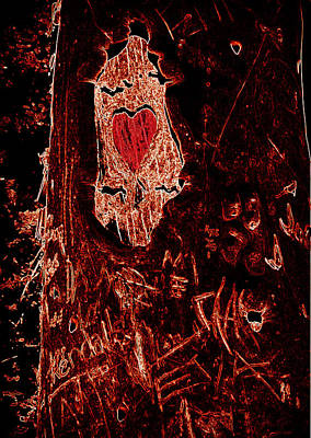Photograph - Tree Carvings Heart by Cindy Wright