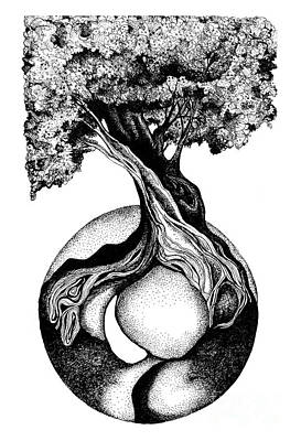Drawing - Tree Of Life by Danielle Scott