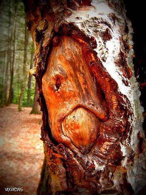 Tree Face Art Print by Vix Views