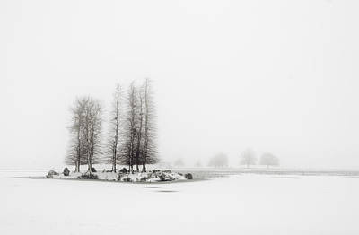 Tree In Snow Print by Yagosan