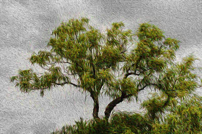 Tree In The Wind Art Print