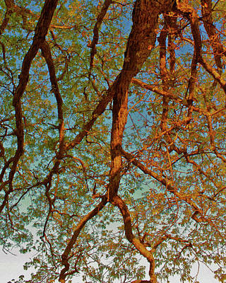 Tree Lightning Oil Painting Style Art Print