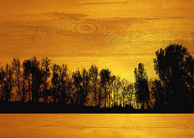 Tree Line On Wood Original