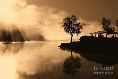 Tree Midst The Fog- Sepia Art Print by Gina Collins